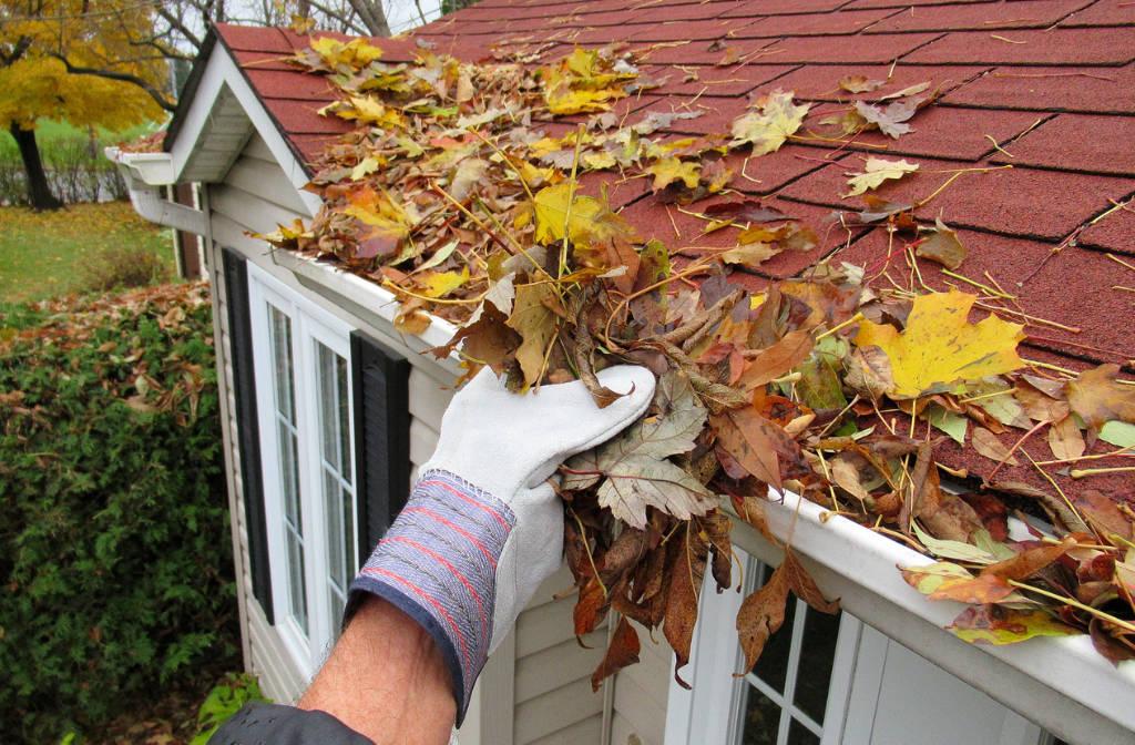 Retirer les feuilles de sa toiture