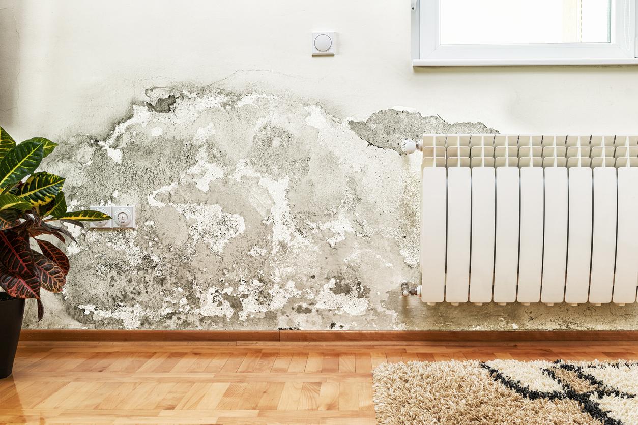 Humidité sur le mur d'une maison