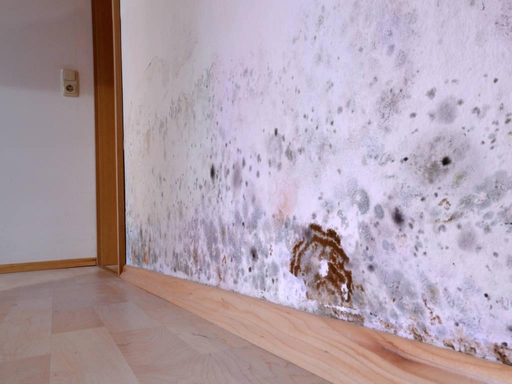 Humidité des murs : comment mieux isoler ?